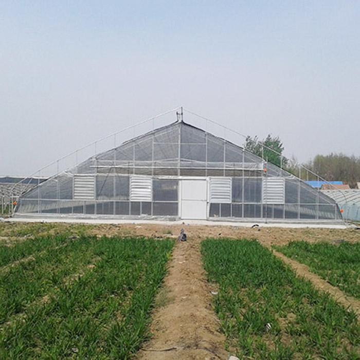 温室大棚浅谈冬季蔬菜如何增加光照