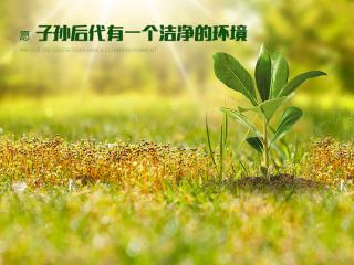 广东复合碱公司-企业愿景