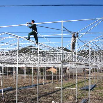 冬暖式蔬菜温室大棚的建设注意要点