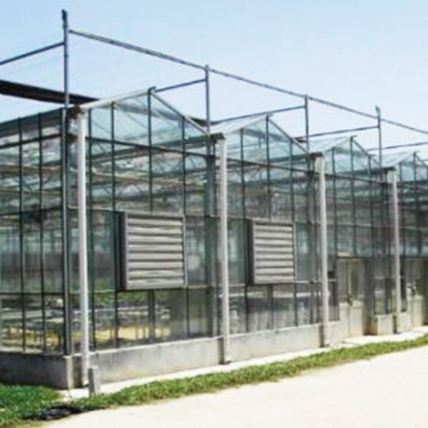 内蒙古文络温室