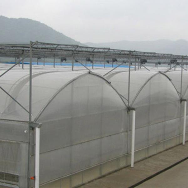 山东薄膜温室承建