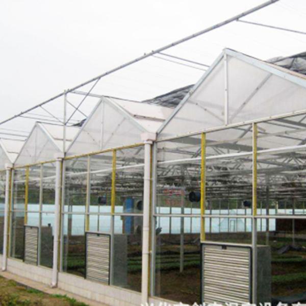 河北玻璃温室种植基地