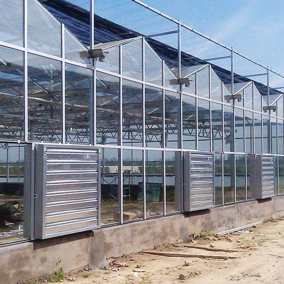 專業的玻璃溫室工程-山西玻璃溫室工程多少錢