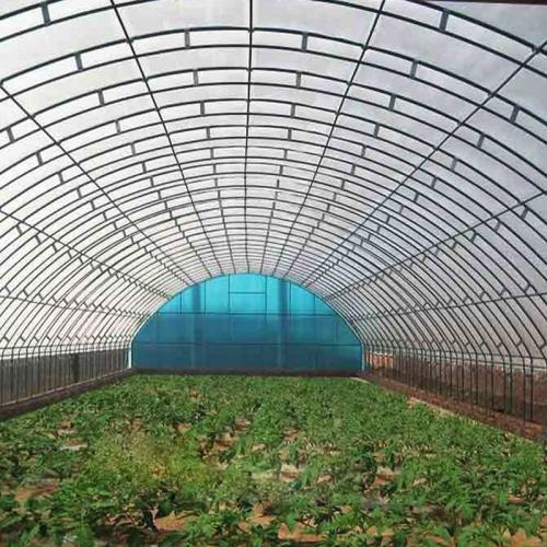 山东蔬菜温室厂家:蔬菜温室大棚种植技术