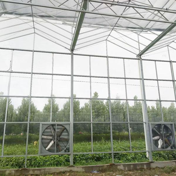 河南阳光板玻璃温室