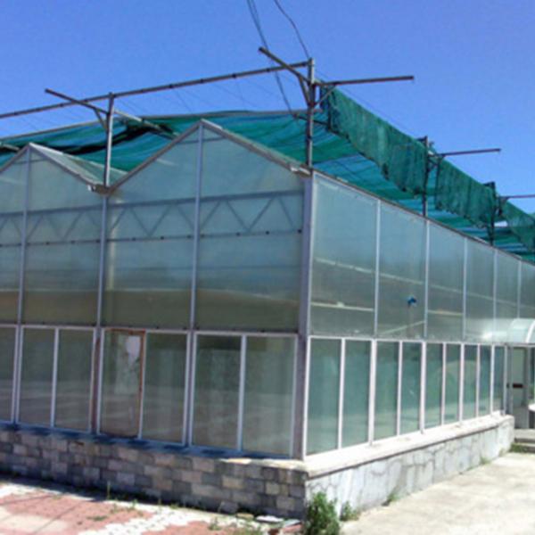 云南阳光板温室建造商