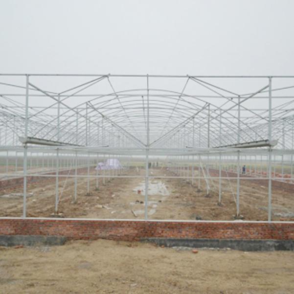 新疆智能连栋温室工程,山东称心的智能连栋温室