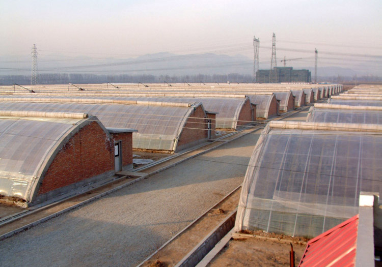 日光温室建造