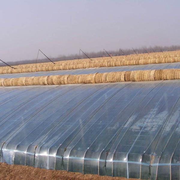 冬暖钢架式温室大棚