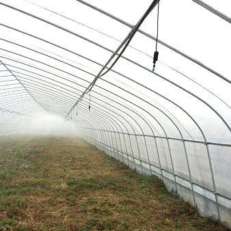 山东蔬菜温室温度管理