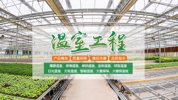 西藏生态餐厅建设公司
