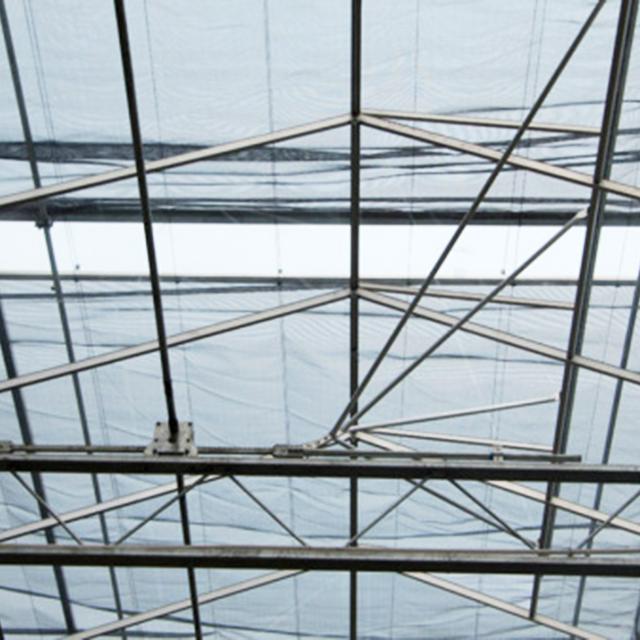 江苏阳光板温室工程