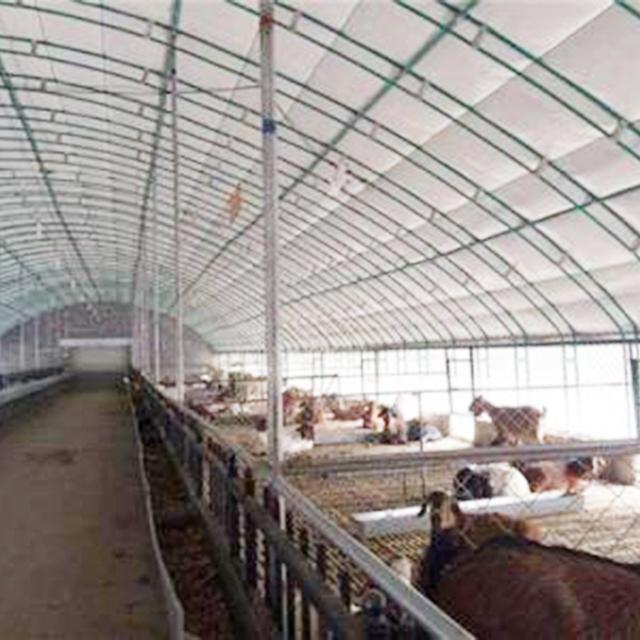 报价合理的养殖大棚哪里有-山东养殖大棚建设