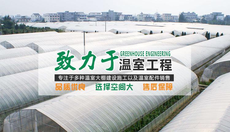 安徽连栋薄膜温室价格