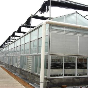 花卉玻璃温室系統