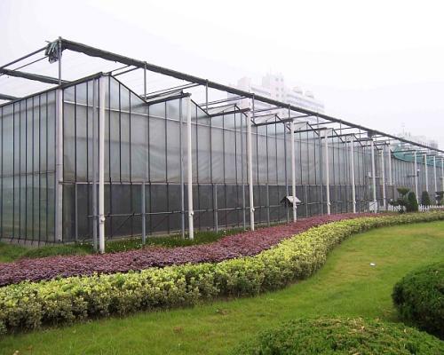 新疆阳光板温室|山东高质量的阳光板温室