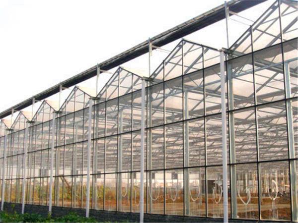 河北玻璃温室 玻璃温室大棚制造商