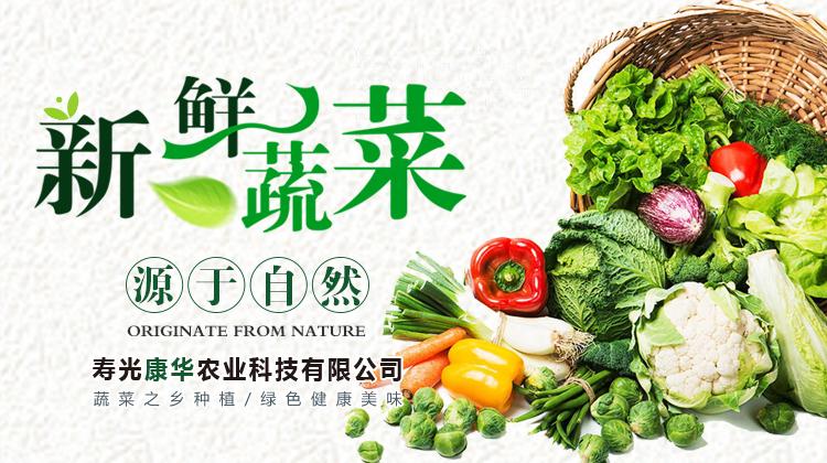 蔬菜学校配送