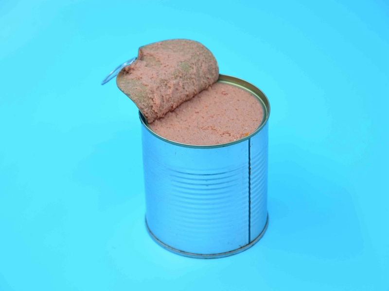 宠物罐头食品