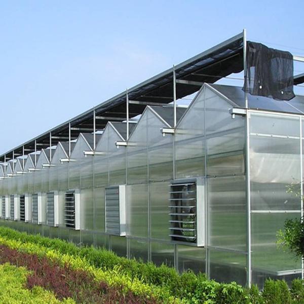 为什么选择建造连栋温室大棚的越来越多了?