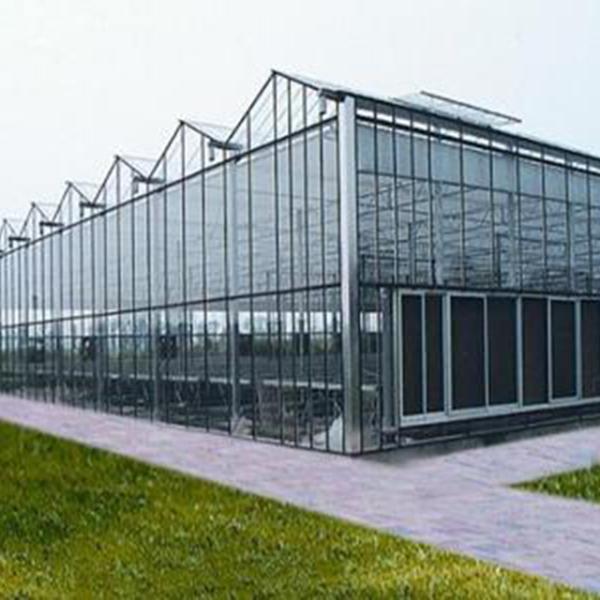 阳光板温室工程