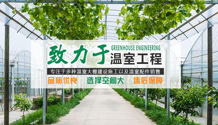 温室景观生态