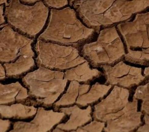 土壤板結治理