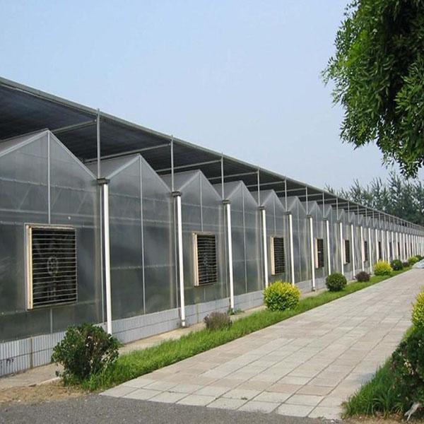 阳光板玻璃温室