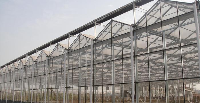 称心的温室大棚推荐,智能温室建设