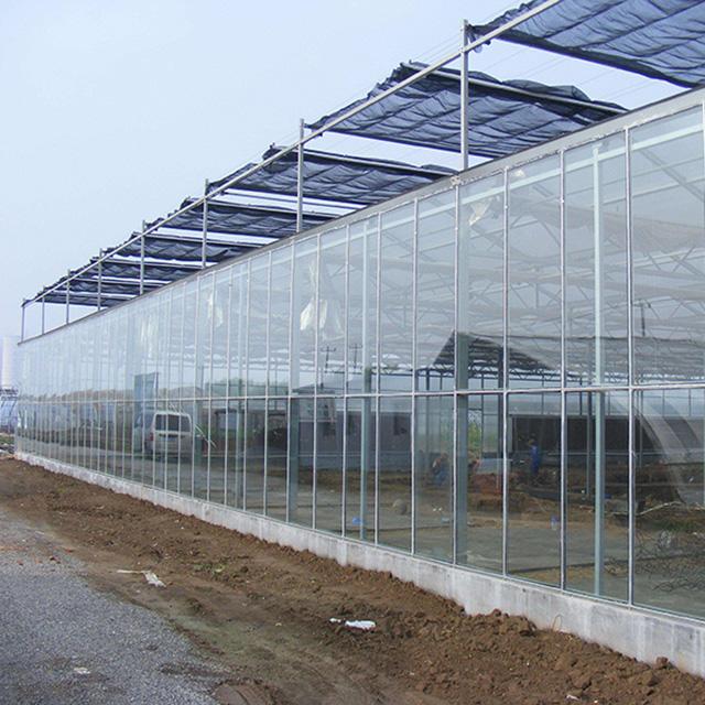山东效果好的温室大棚建设-智能温室建设公司