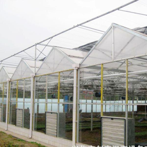 第五代温室大棚建造商