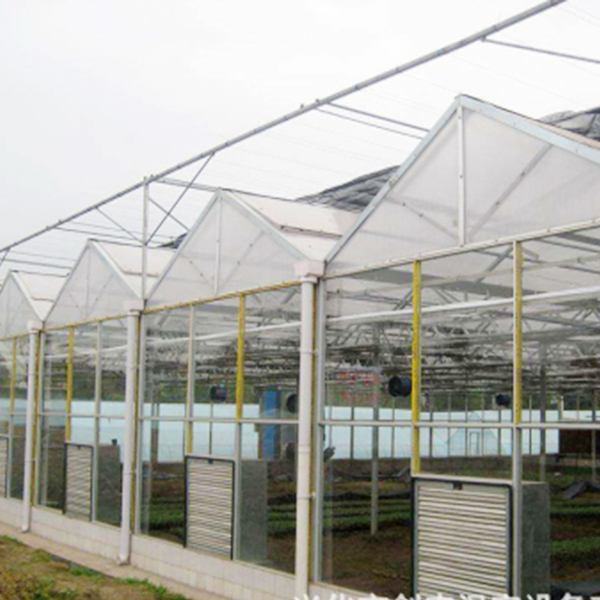 新疆文洛温室的设计要求