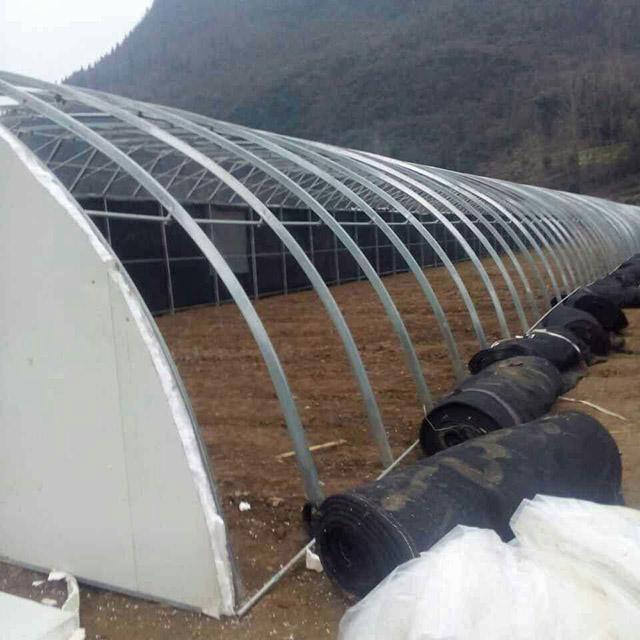 山东温室大棚骨架建设