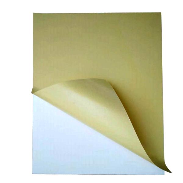 供應山東優良的自粘PVC相冊內頁|自粘低密度相冊內頁哪家好
