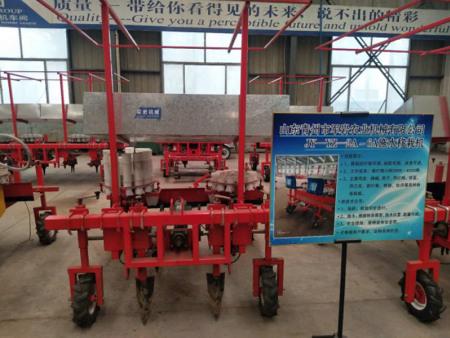 军岩农业机械质量好的栽苗机出售-当归栽苗机生产厂家