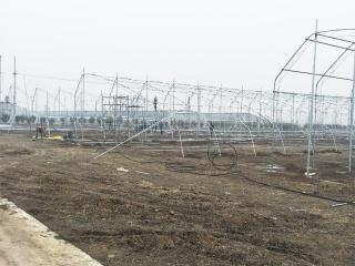 辽宁钢架大棚建造工程案例