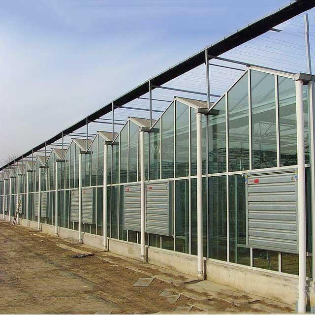 玻璃温室大棚设计