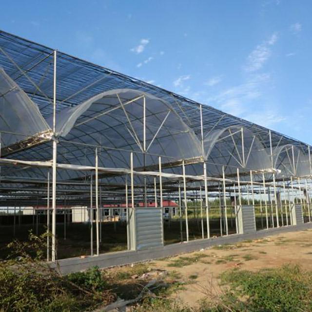 连栋温室大棚建造