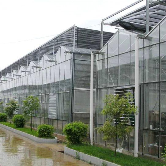 青州市七洲温室工程有限公司