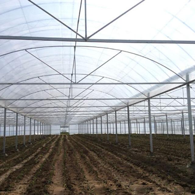 薄膜温室大棚建造