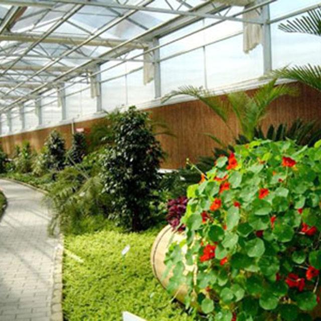 山东花卉大棚设计和热量计算