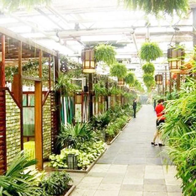 生态餐厅温室大棚种植蔬菜有何优点?