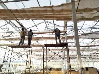 江西阳光板温室承建工程案例