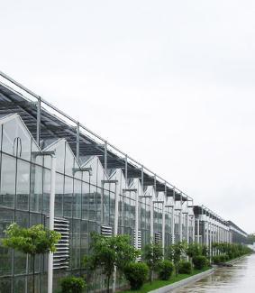 内蒙花卉温室