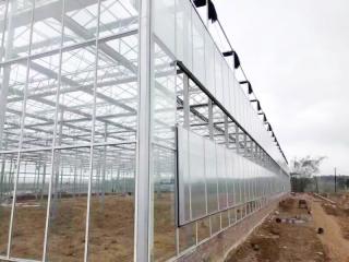 安徽文络温室造价工程案例