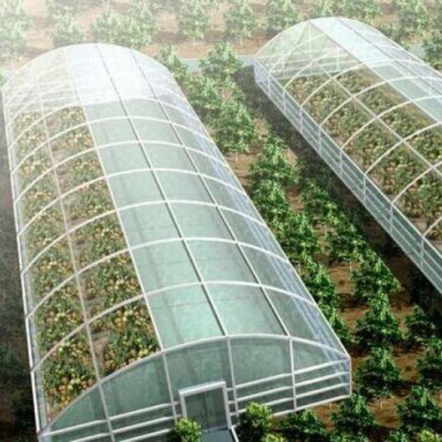 甘肃高温蔬菜大棚建造