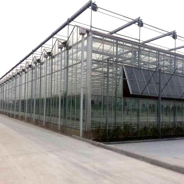 山东玻璃温室建设 玻璃温室建造厂家