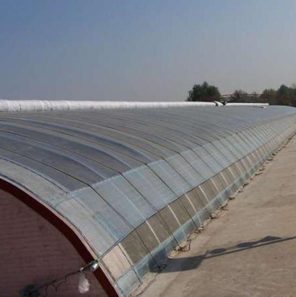 冬暖式日光温室