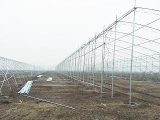 新疆养殖温室设计工程案例