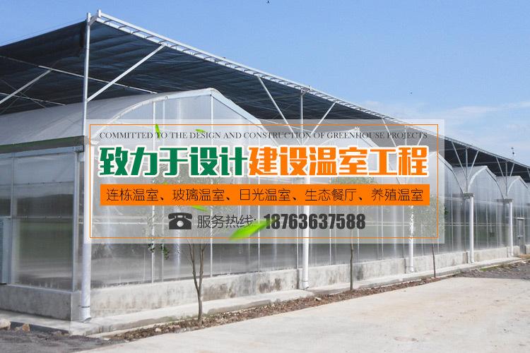青州玻璃温室厂家